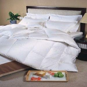 couette 200x200 en duvet d 39 oie blanche 90 500 tc. Black Bedroom Furniture Sets. Home Design Ideas